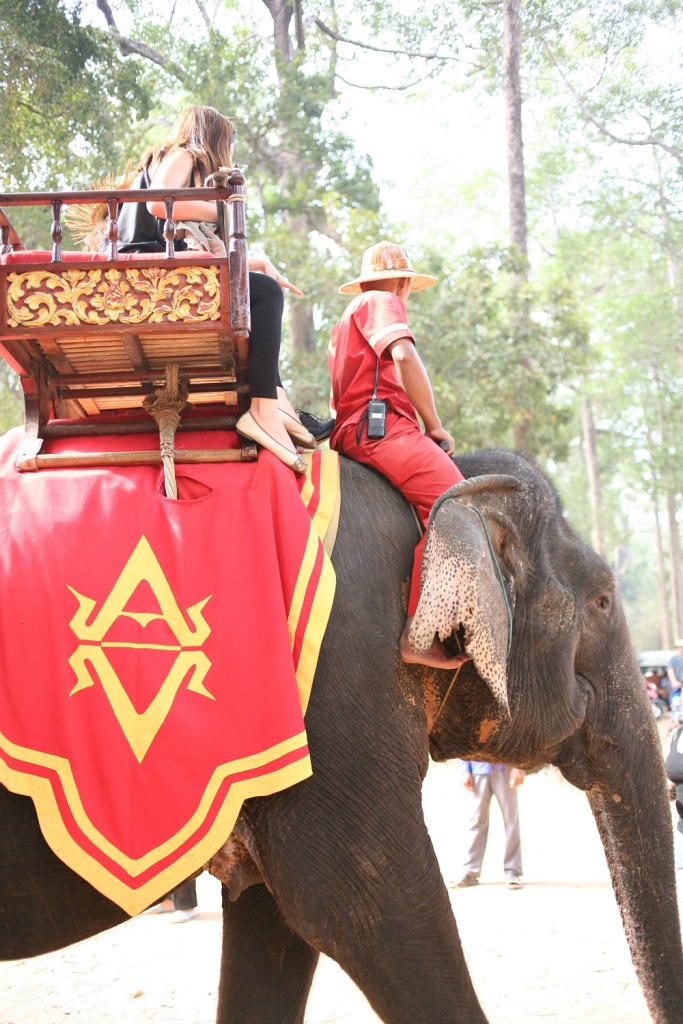 Elephant at Angkor Thom